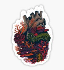 heart of the sea Sticker
