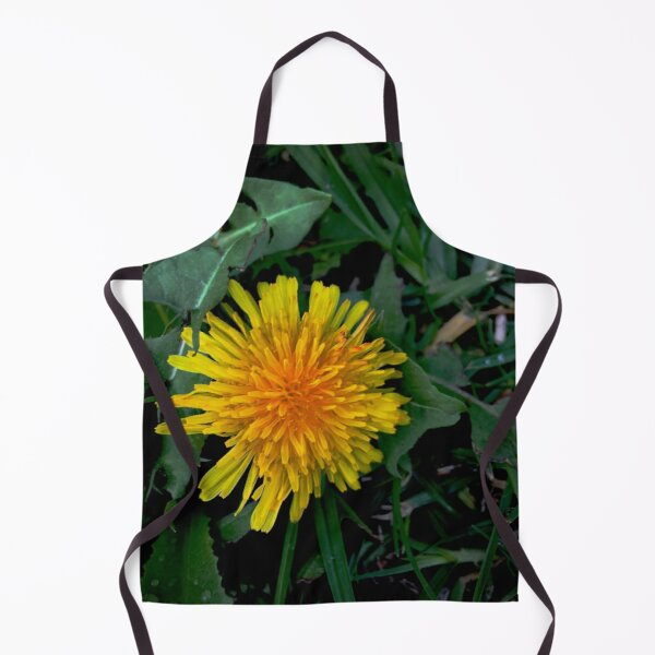 Behold The Humble Dandelion Apron by Douglas E. Welch