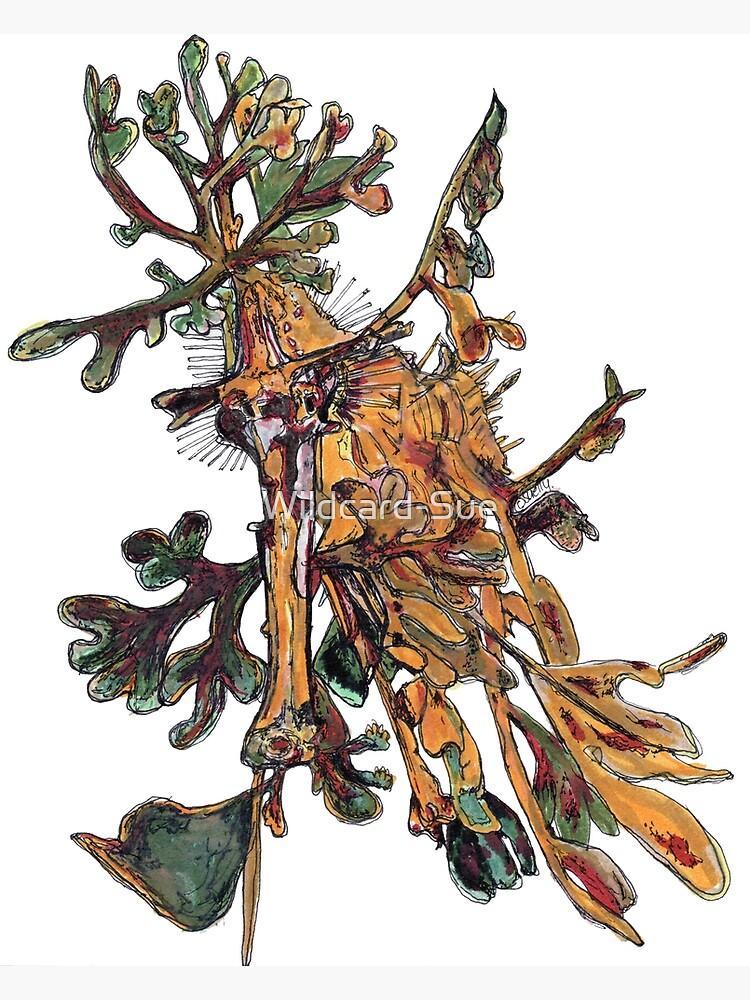 Carlee the Leafy Sea Dragon by Wildcard-Sue