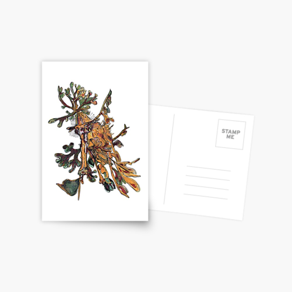 Carlee the Leafy Sea Dragon Postcard