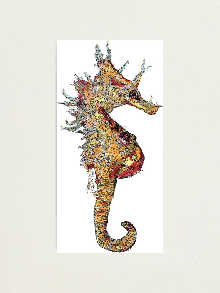 Alternate view of Di the Seahorse  Photographic Print
