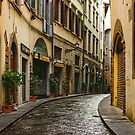 Impressions Of Florence - Walking on the Silver Street in the Rain by Georgia Mizuleva