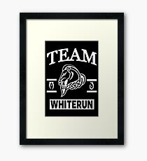 Team Whiterun Framed Print