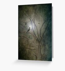 A Night in the Forest Greeting Card