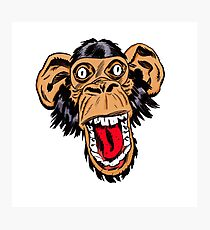 Graphic Chimp Coloured Photographic Print