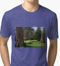 The Museum Gardens, York Tri-blend T-Shirt