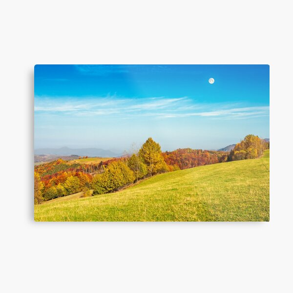 moon above autumn landscape with grassy meadow Metal Print
