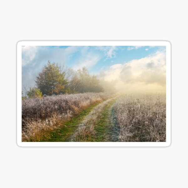 country road uphill through meadow Sticker