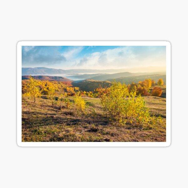 gorgeous autumn sunrise Sticker