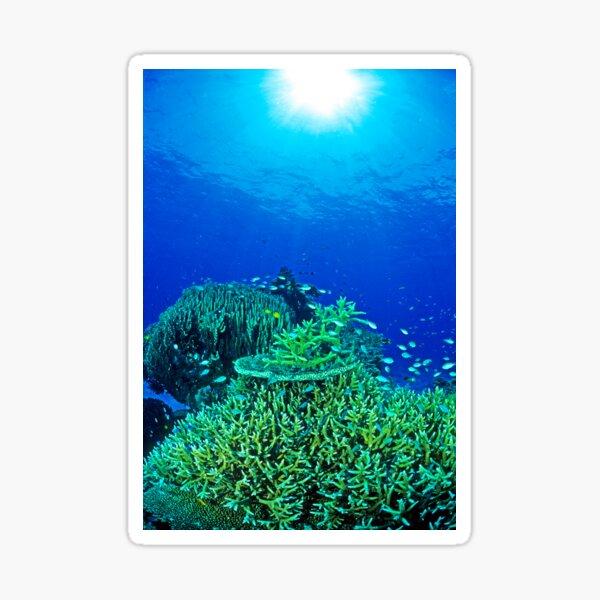 Coral reef scene Sticker