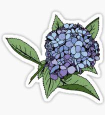 Hortensie blau Sticker