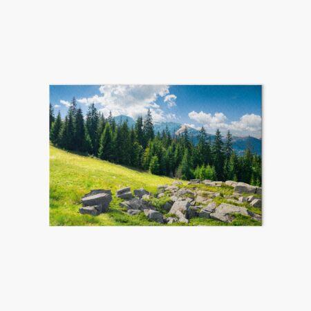 alpine summer landscape composite Art Board Print