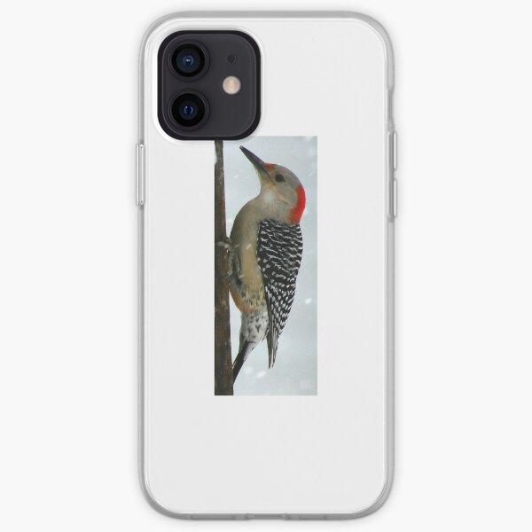 Woodpecker in Winter iPhone Soft Case