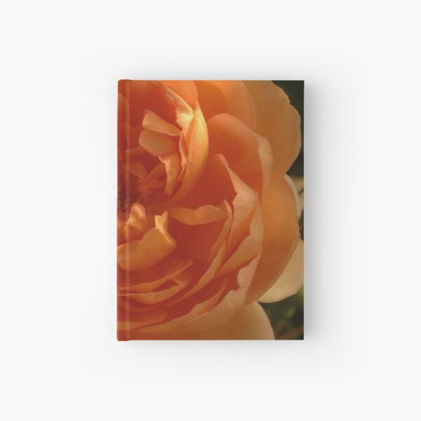 Orange Rose Hardcover Journal