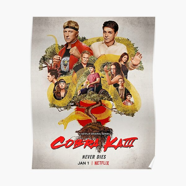 Affiche Cobra Kai Poster