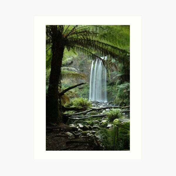Joe Mortelliti Gallery - Hopetoun Falls, Otways Forest, Victoria, Australia. Art Print