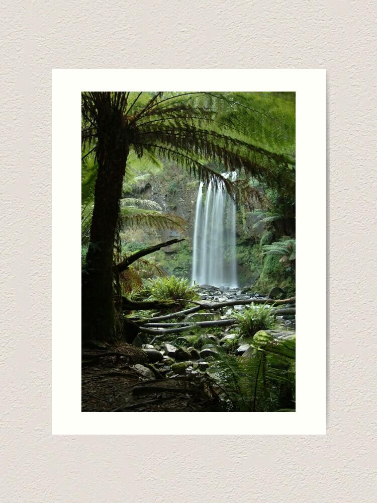 Alternate view of Joe Mortelliti Gallery - Hopetoun Falls, Otways Forest, Victoria, Australia. Art Print