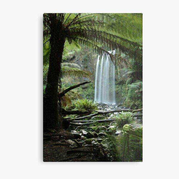 Joe Mortelliti Gallery - Hopetoun Falls, Otways Forest, Victoria, Australia. Metal Print