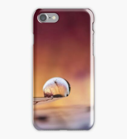 Poised on Angel's Wing iPhone Case/Skin