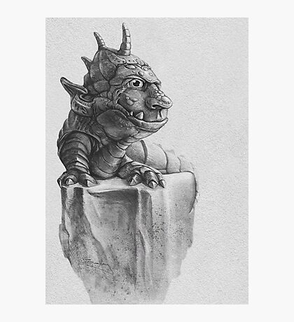 Troll Lizard Rock Photographic Print