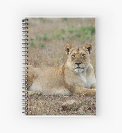 WATCHING - The lioness -  Panthera leo Spiral Notebook