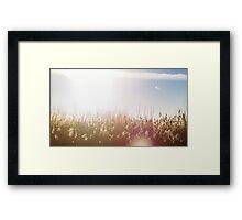Grassy Framed Print