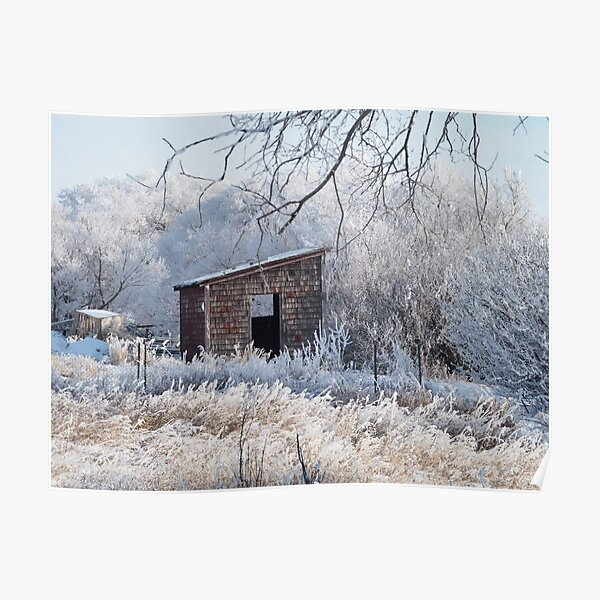 Winter Hoar Frost And Old Building Poster