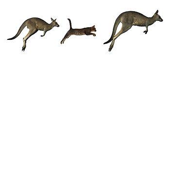 Three kangaroos? by skulioskarsson