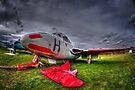 De Havilland DH115 Vampire T.ll by Nigel Bangert