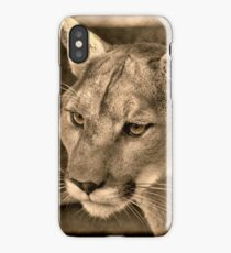 Panther Portrait  iPhone Case/Skin