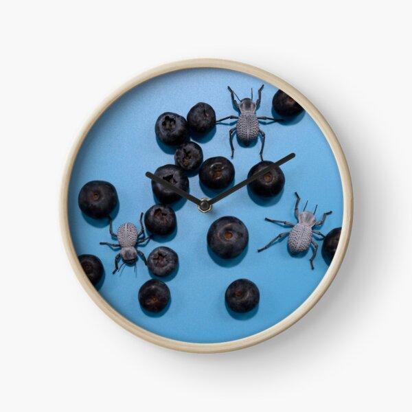 Coléoptères du bleuet Horloge