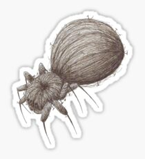 Pin Spider Sticker