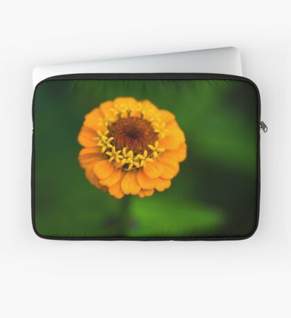 Orange and Green - Beautiful Together Laptop Sleeve