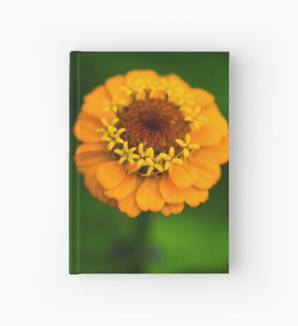 Orange and Green - Beautiful Together Hardcover Journal