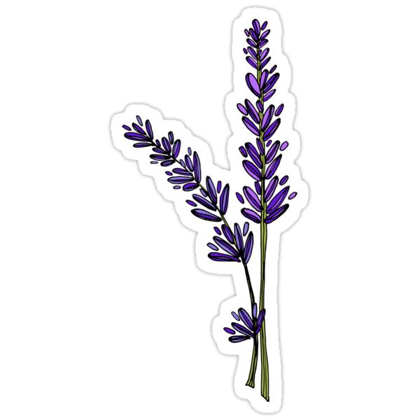 Quot Lavender Quot Stickers By Alyssa Duckworth Redbubble