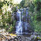 Minnamurra Falls by Candy Jubb