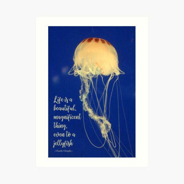 Life is a beautiful, magnificent thing. Art Print