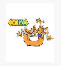 CatDog Photographic Print