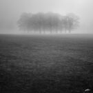 The Congregation by redtree