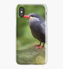 Inca Tern iPhone Case/Skin