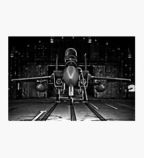 493rd Fighter Squadron GRIM REAPERS Photographic Print