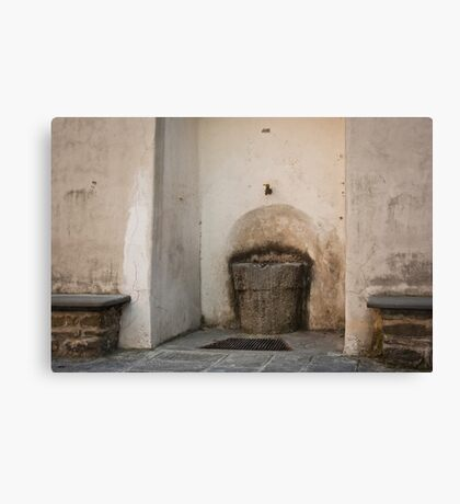 Welcome to the watering place. Canvas Print