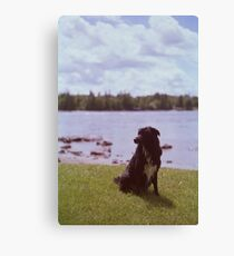 'Lilly' Canvas Print