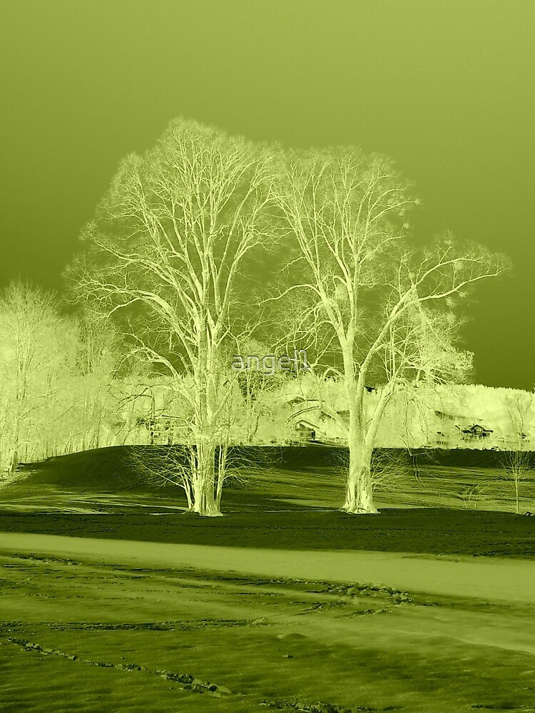 Just Green by ©The Creative  Minds