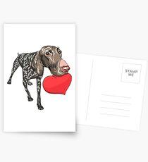 Kurzhaar with red heart Postcards