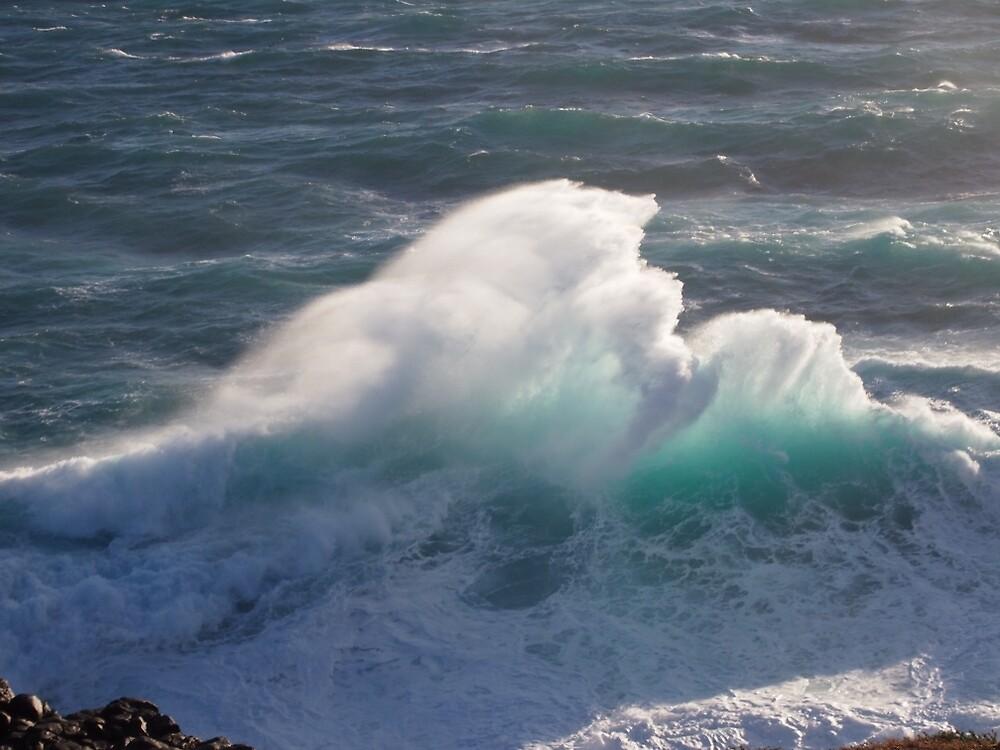 Spectacular breaker at Cape Bridgewater, near Portland, Victoria's west coast, Australia. by thisisaustralia