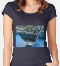 Blue Window Display Women's Fitted Scoop T-Shirt