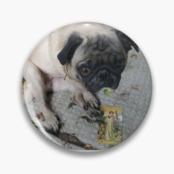 Tarot Pug Rosie & 9 of Pentacles Pin