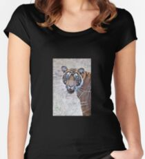 Young Male Tiger Closeup Women's Fitted Scoop T-Shirt
