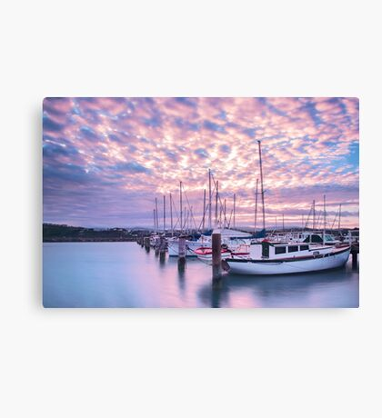 Another Evans Bay Marina Sunrise Canvas Print